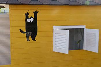 кот на доме